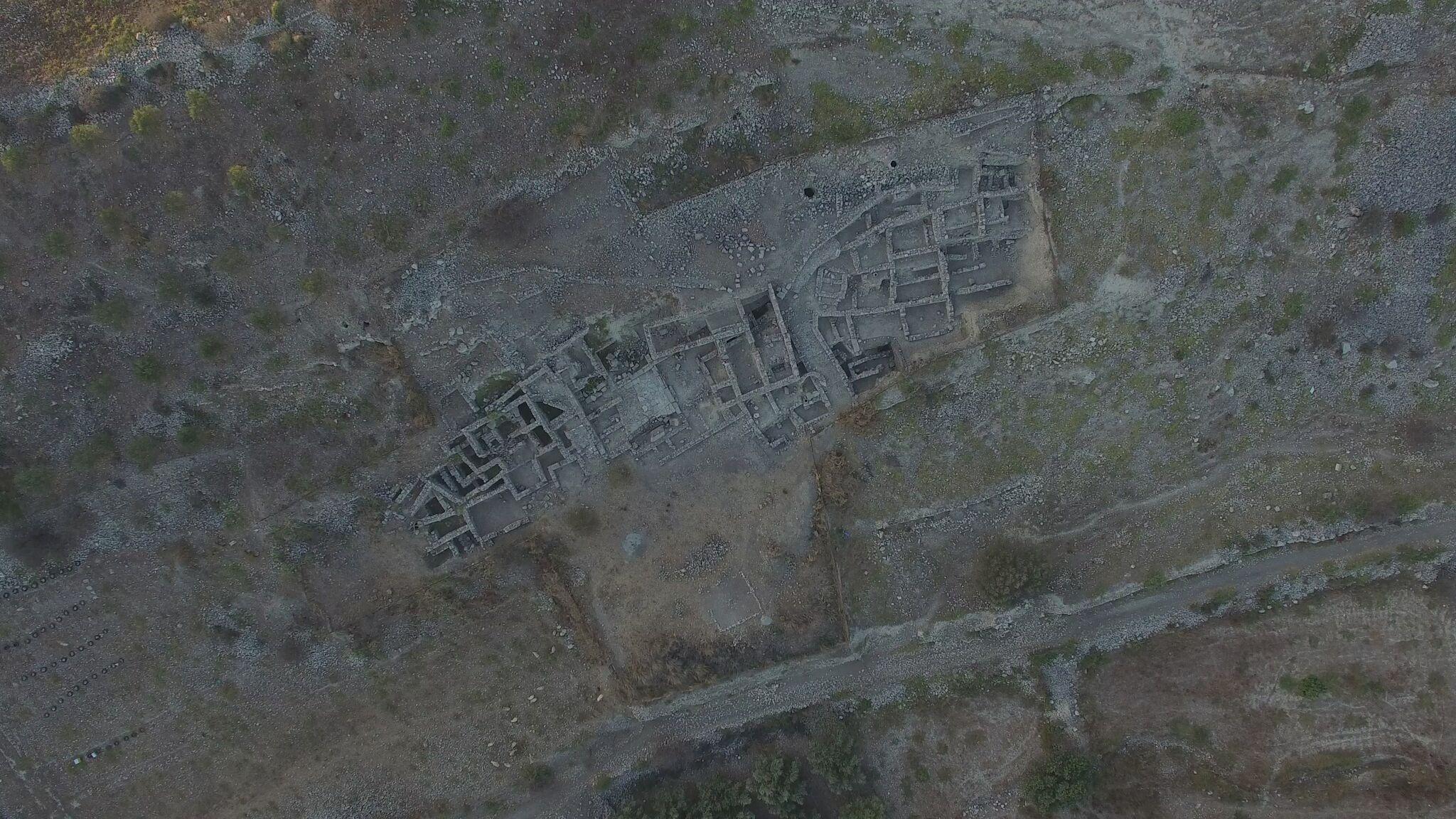 Chalara-Drone